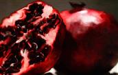 Cocoa, Pomegranates, Cranberries, and Grapes Extracts to Control Blood Sugar?