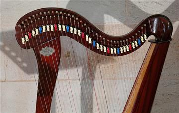Study Explores Effects of Harp Music on ICU Patients
