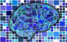Grow your own brain! Self-Directed Neuroplasticity
