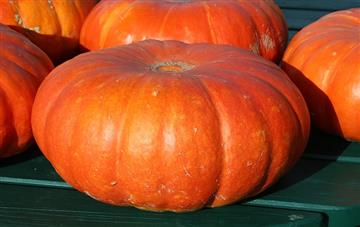 Pumpkins - not just for Halloween!