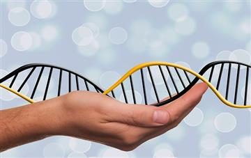 Epigenetics - you can rewrite your future