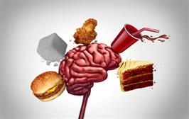 World first study links obesity with reduced brain plasticity